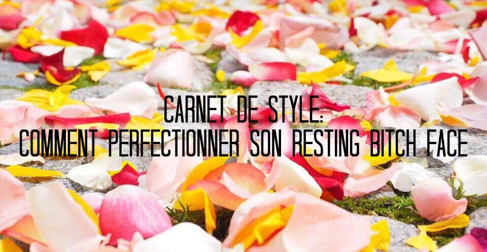 carnet de style perfectionner son bitch face