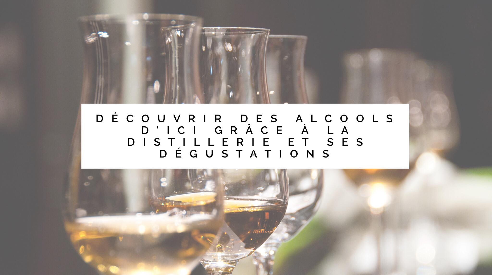 Découvrir des alcools, comme le gin, lors d'une dégustation à la Distillerie.