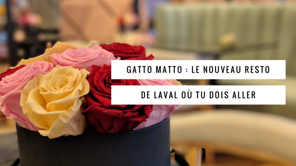 Jennifer parle du restaurant Gatto Matto