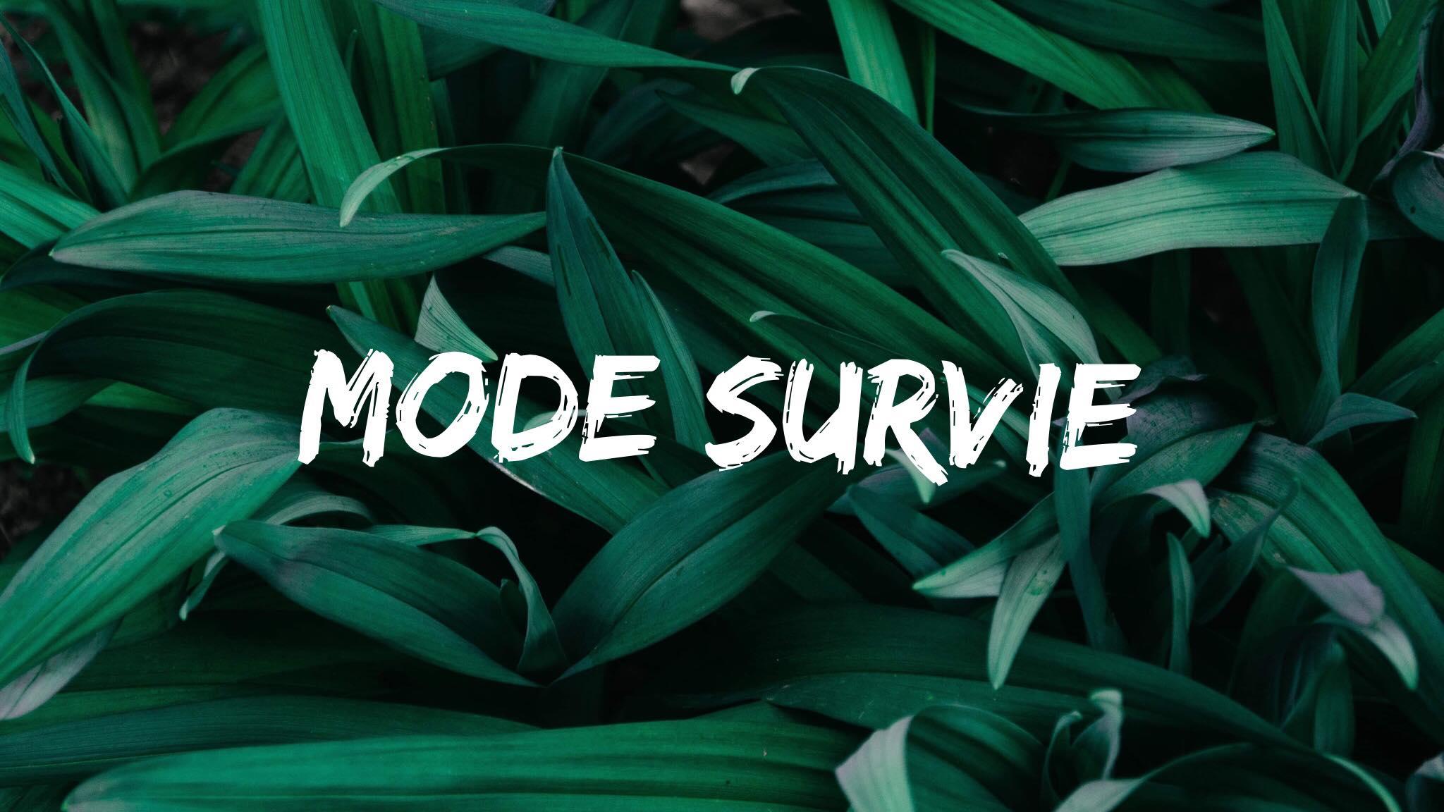 Mode survie