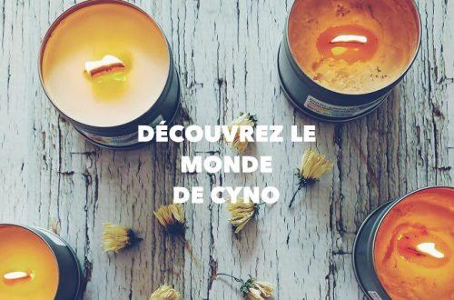 Monde de Cyno