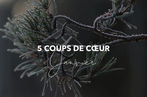 5 coups de coeur_janvier