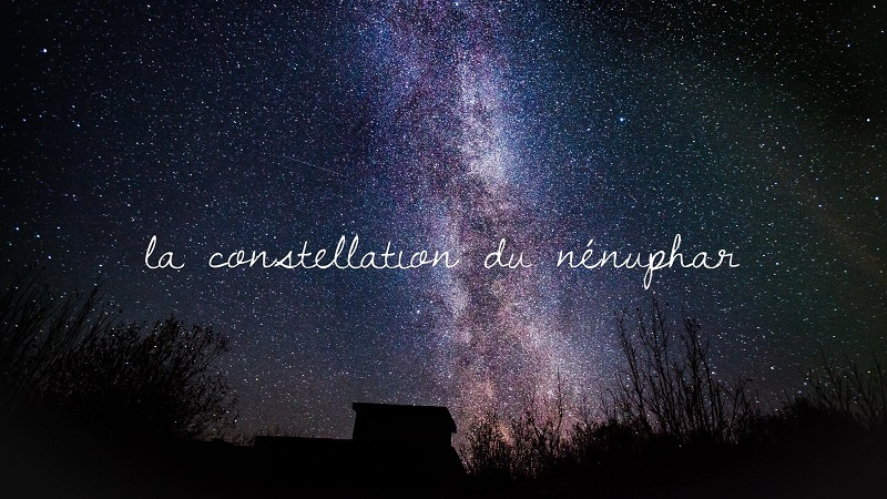 La constellation